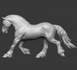 Horse №17