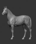 Лошадь (смола)